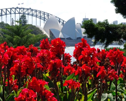 10 free things to do in Sydney - Royal Botanical Gardens