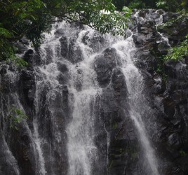 The Atherton Tablelands Waterfall Circuit