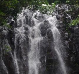 The Atherton Tablelands Waterfall Circuit